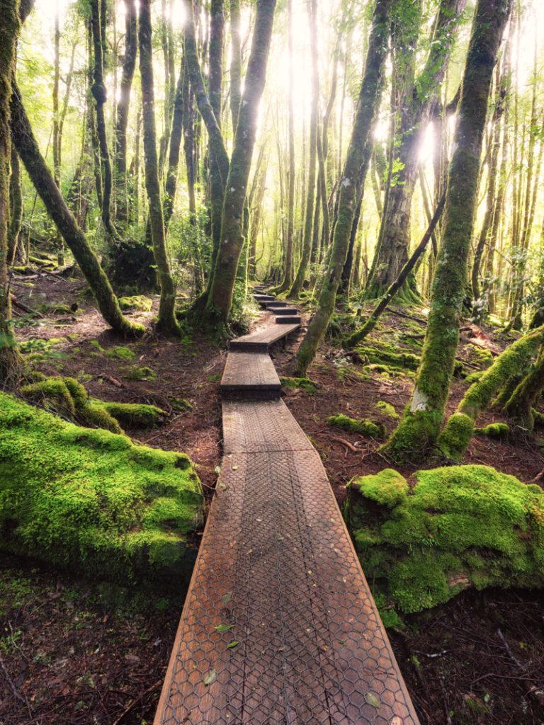 Landscape photography leading lines