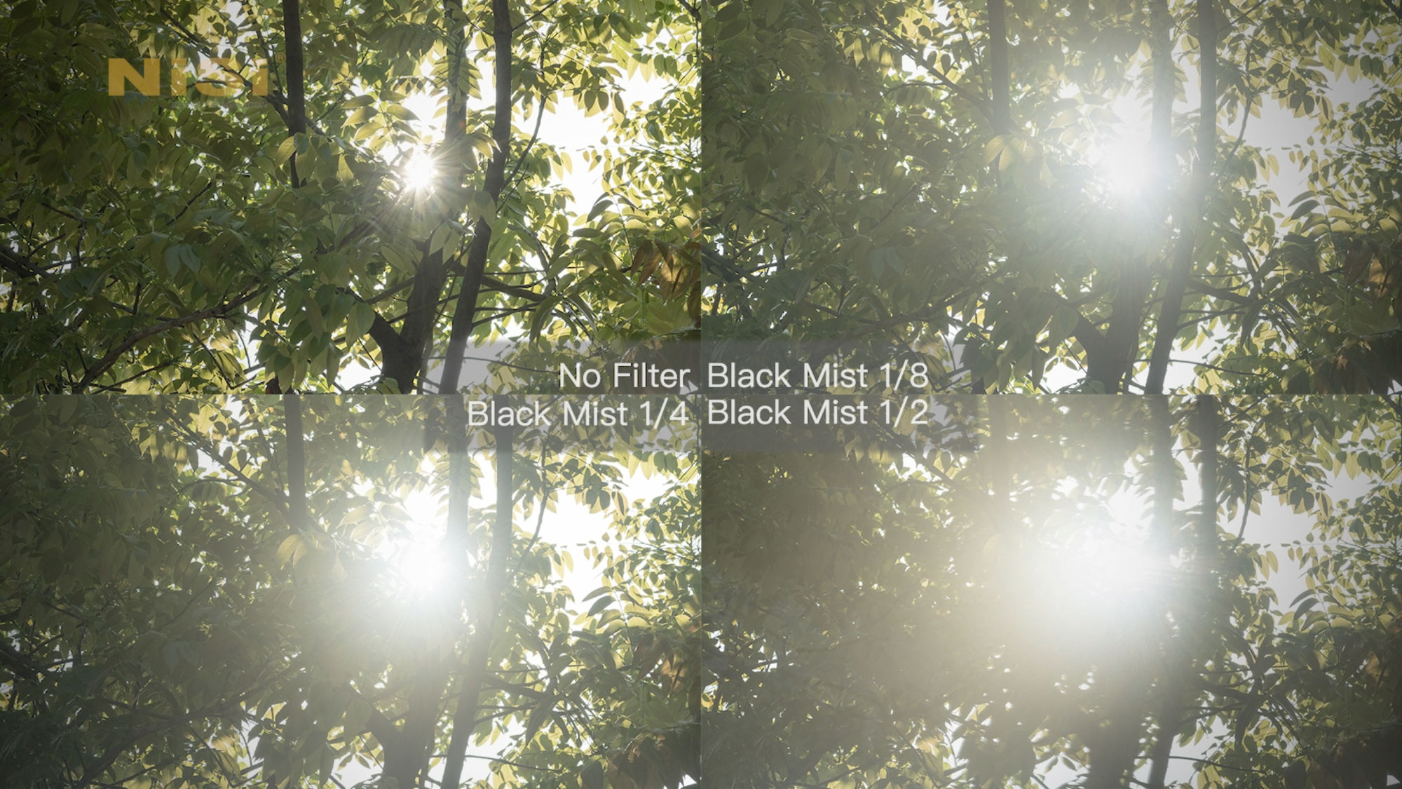 Black Mist Comparision 1